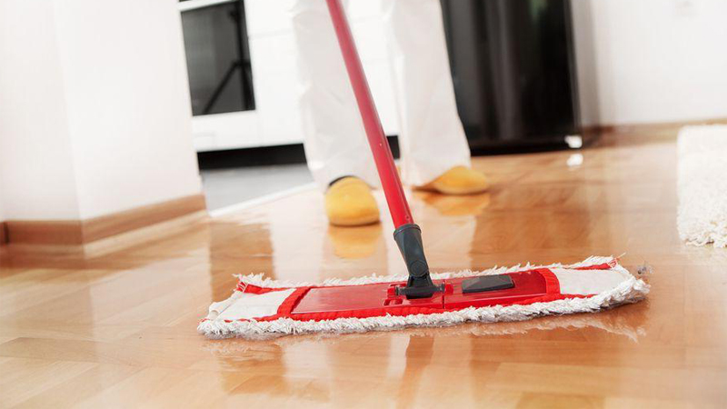 pet-and-home-care-cleaning-services-02
